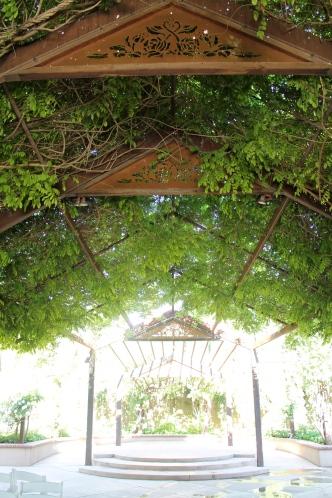 Incredible rose wisteria arbor for weddings