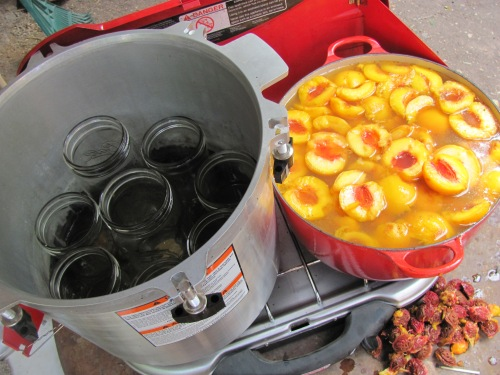 Canning Peaches on the Coleman campstove last year