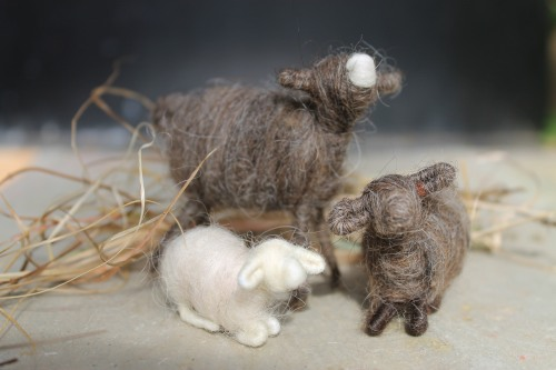 Magdelena made these little wool sheep along with cows, alpacas and The holy family, a Christmas staple where she is from in Austria
