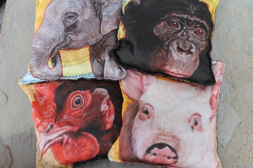 Miranda made special bean bags just for yesterdays show, luckily I scored a few!